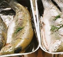 Ryby – samo zdrowe? Jakie ryby należy jeść, a jakich trzeba unikać?