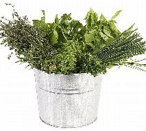 Mięta, rumianek, prawoślaz lekarski, szałwia, tymianek - zioła, które korzystnie wpływają na zdrowie