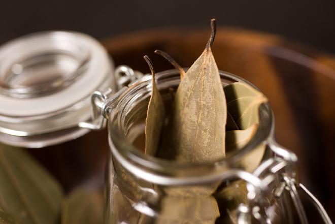Liść laurowy - zastosowania i właściwości liści bobkowych