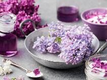 Liliowy syrop z bzu zwyczajnego: pyszny i zdrowy dodatek z jadalnych kwiatów lilaka